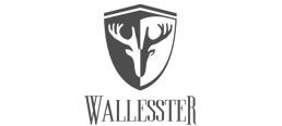 wallesster